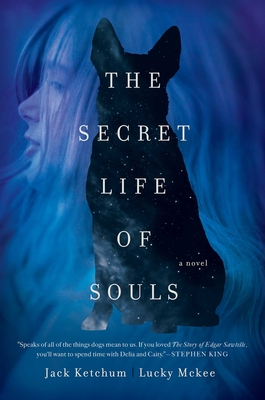 Cover for The Secret Life of Souls
