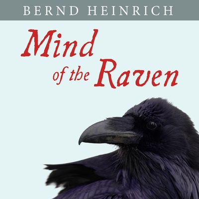 Mind of the Raven: Investigations and Adventures with Wolf-Birds Cover Image
