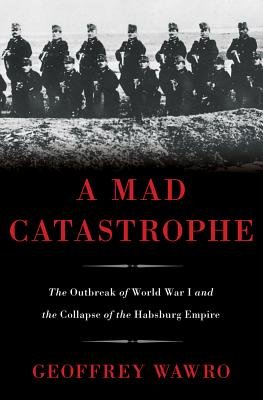 Cover for A Mad Catastrophe