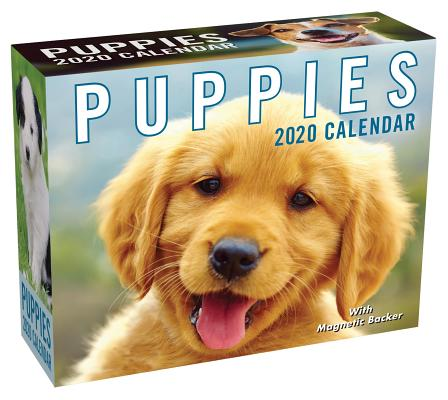 Puppies 2020 Mini Day-to-Day Calendar Cover Image