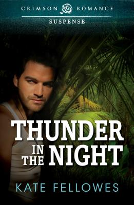 Cover for Thunder In The Night