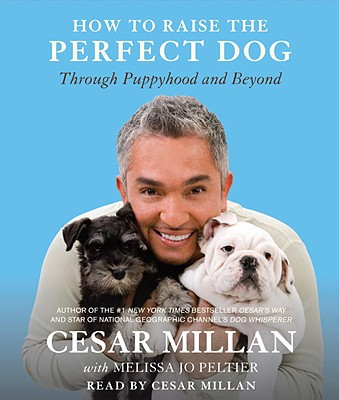 How to Raise the Perfect Dog: Through Puppyhood and Beyond Cover Image