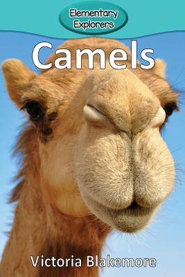 Camels (Elementary Explorers #4) Cover Image