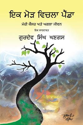 Journey Through a Turning Point: Punjabi Edition Cover Image