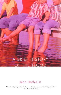 A Brief History of the Flood Cover
