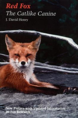 Red Fox Cover