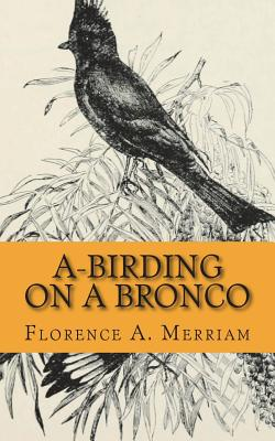 A-Birding on a Bronco Cover Image
