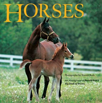 Horses: An Abridgement of Harold Roth's Big Book of Horses Cover Image