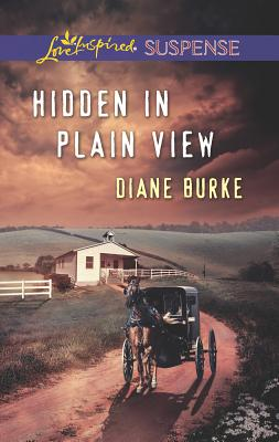 Hidden in Plain View Cover