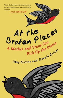 At the Broken Places: A Mother and Trans Son Pick Up the Pieces Cover Image
