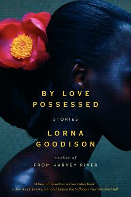 By Love Possessed: Stories Cover Image