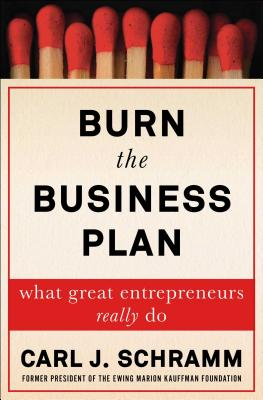 Burn the Business Plan cover image