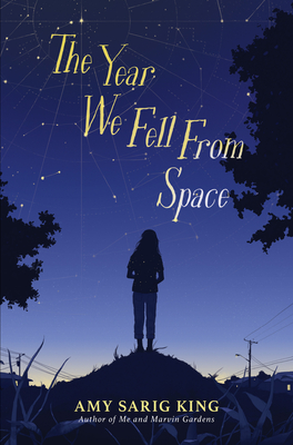 The Year We Fell From Space Cover Image