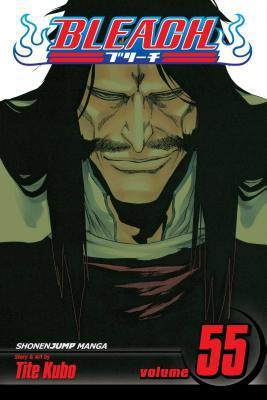 Bleach, Volume 55 Cover