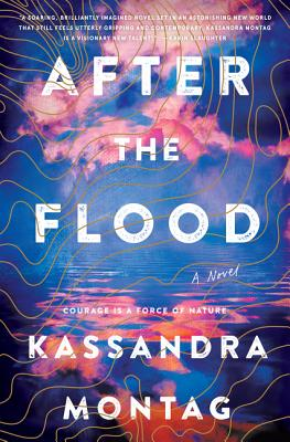 After the Flood: A Novel Cover Image