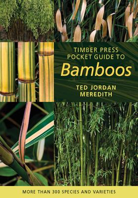 Timber Press Pocket Guide to Bamboos Cover Image