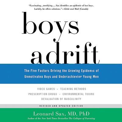 Cover for Boys Adrift Lib/E