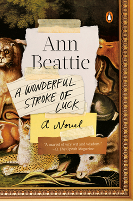 A Wonderful Stroke of Luck: A Novel Cover Image