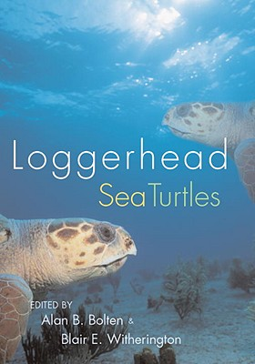 Loggerhead Sea Turtles Cover