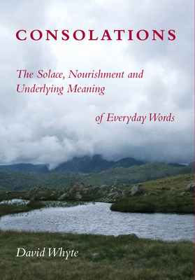 Consolations: The Solace, Nourishment and Underlying Meaning of Everyday Words Cover Image