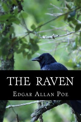 The Raven Cover Image