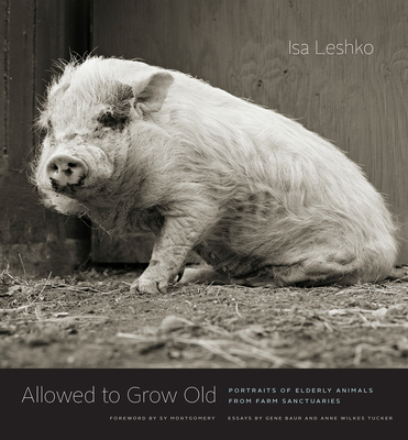Allowed to Grow Old: Portraits of Elderly Animals from Farm Sanctuaries Cover Image