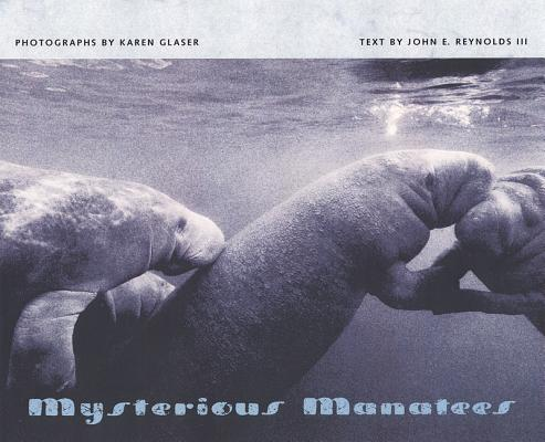 Mysterious Manatees Cover Image