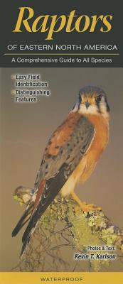 Raptors of Eastern North America: A Comprehensive Guide to All Species Cover Image