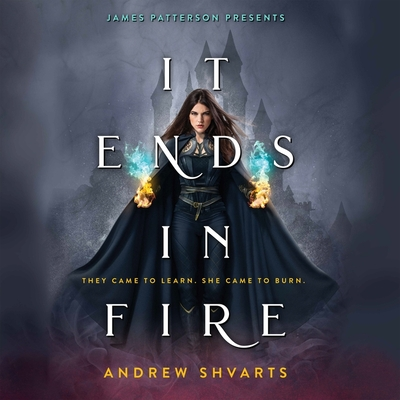 It Ends in Fire Cover Image