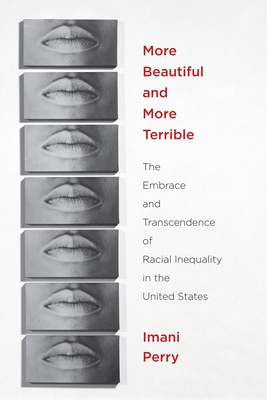 More Beautiful and More Terrible: The Embrace and Transcendence of Racial Inequality in the United States Cover Image