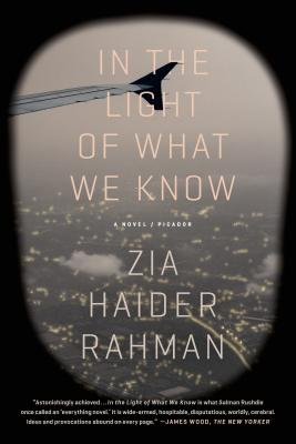 In the Light of What We Know: A Novel Cover Image
