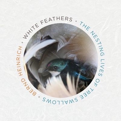 White Feathers: The Nesting Lives of Tree Swallows Cover Image