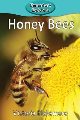 Honey Bees (Elementary Explorers #6) Cover Image