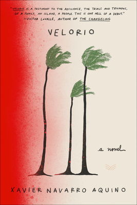 Velorio: A Novel Cover Image