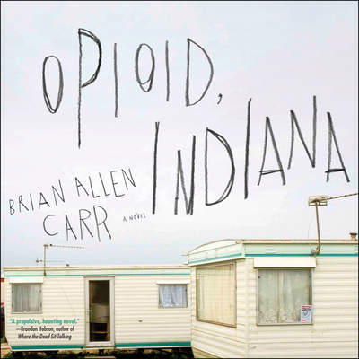 Opioid, Indiana Cover Image