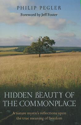 Cover for Hidden Beauty of the Commonplace