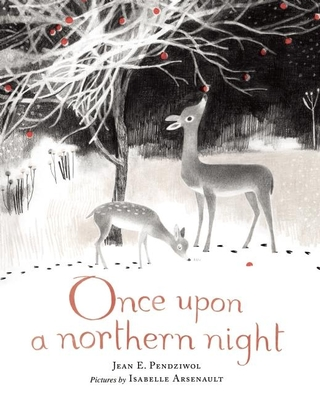 Once Upon a Northern Night Cover