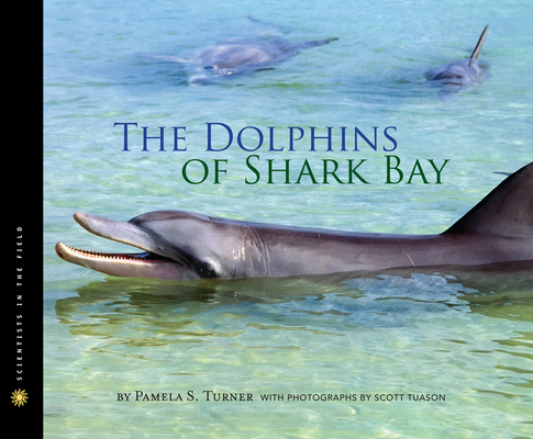 The Dolphins of Shark Bay (Scientists in the Field Series) Cover Image