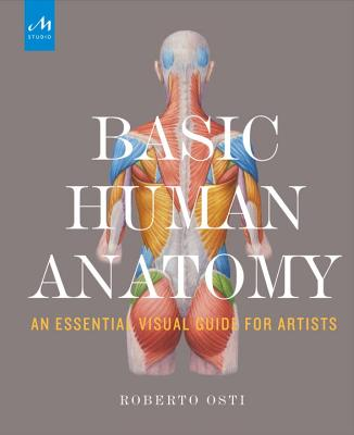 Basic Human Anatomy: An Essential Visual Guide for Artists Cover Image