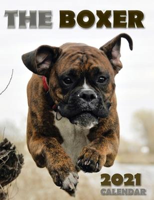 The Boxer 2021 Calendar Cover Image