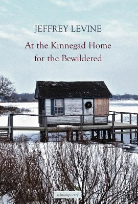 The Kinnegad Home for the Bewildered Cover Image