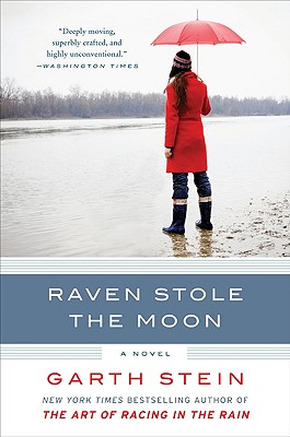 Raven Stole the Moon Cover Image