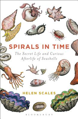 Spirals in Time: The Secret Life and Curious Afterlife of Seashells Cover Image