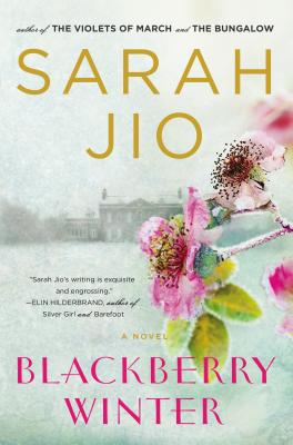 Blackberry Winter: A Novel Cover Image