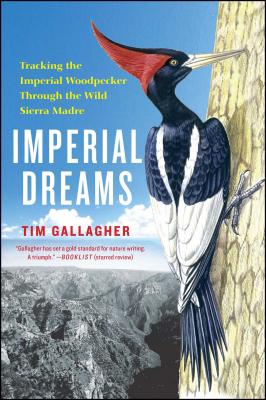 Imperial Dreams: Tracking the Imperial Woodpecker Through the Wild Cover Image