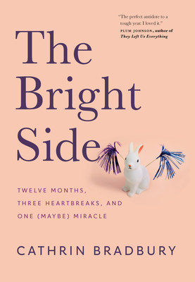 The Bright Side: Twelve Months, Three Heartbreaks, and One (Maybe) Miracle Cover Image