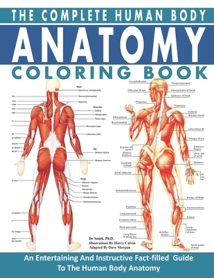 The Complete Human Body Anatomy Coloring Book: The Ultimate Anatomy And Physiology Study Guide For Beginners ! Cover Image