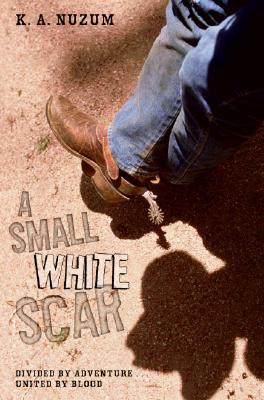 A Small White Scar Cover Image