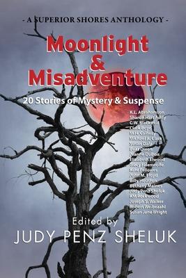 Cover for Moonlight & Misadventure