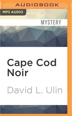 Cape Cod Noir (Akashic Noir) Cover Image
